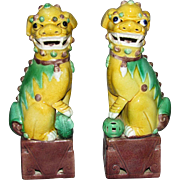 Chinese Late Qing early Republic Foo Dogs