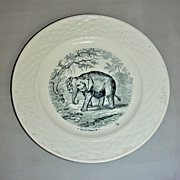 19th Century Child's Plate w/ Elephant Transfer