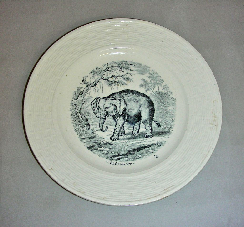 19th Century Child's Plate w/ Elephant Transfer