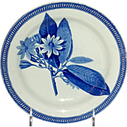"7 ¼"" Blue Transfer Wedgwood Botanical Plate, c. 1810-1820"