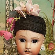 ~~~ Superb Jumeau 1907 all Original Asian Bisque Girl in Original Costume ~~~
