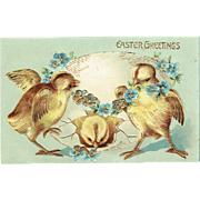 Vintage Postcard Easter Greetings Baby Chick Egg and For Get Me Knots