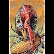 Vintage Postcard Thanksgiving Joys Turkey and Corn 1909