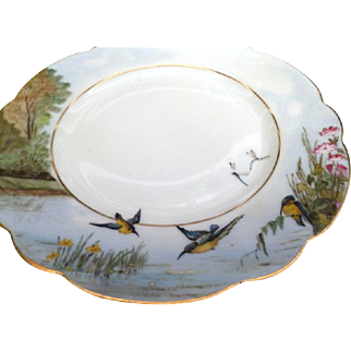 "Charming C. 1870s Hand painted Haviland Limoges Set 12 Different 9"" BIRDS PLATES"