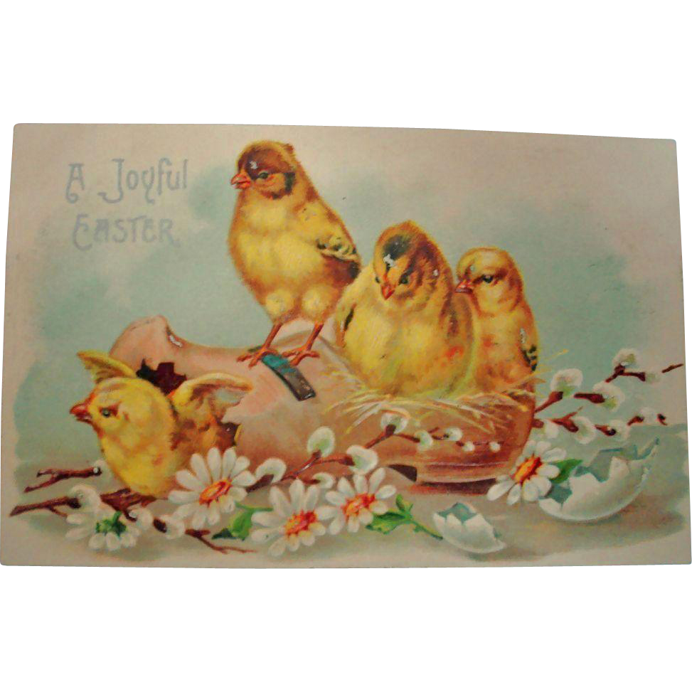 Vintage Embossed Easter Postcard - Easter Chicks Post Card
