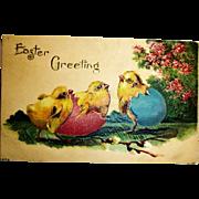 Vintage Embossed Easter Postcard - Easter Chicks Antique Post Card