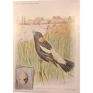 The American Singer Series No 10 Bobolink