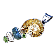 Impressive and Powerful, Ammonite, Moldavite, Peridot, and Biwa Pendant
