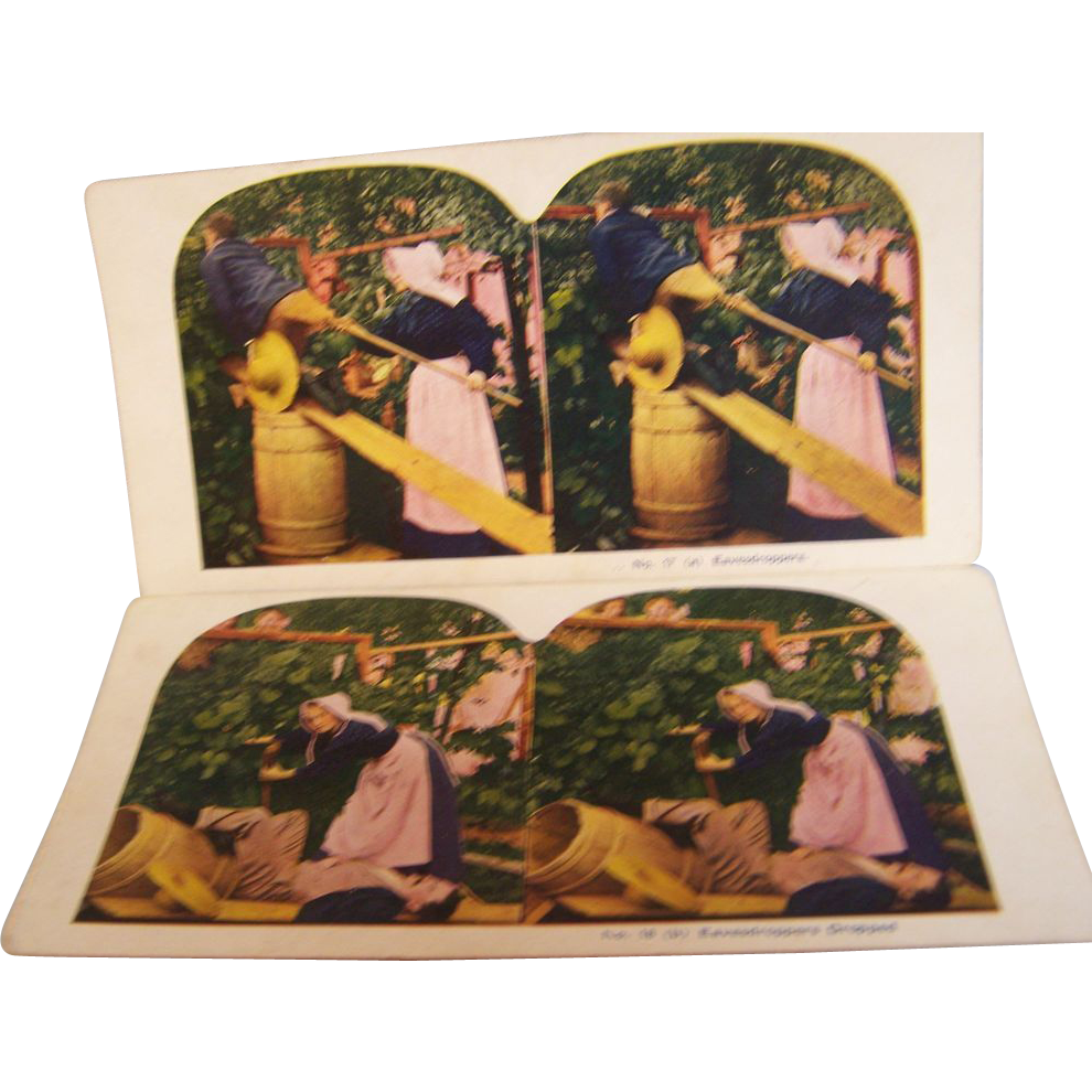 Stereoview Cards Set of 2