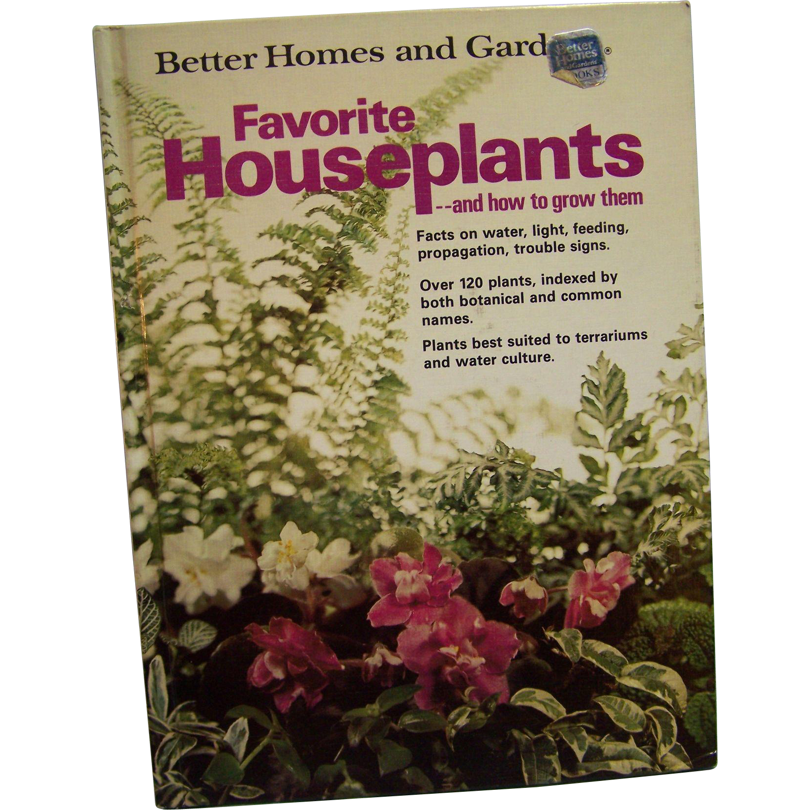 Better Homes And Garden Favorite Houseplants From Wings On