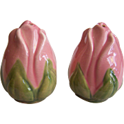 Franciscan Desert Rose Salt and Pepper Shakers