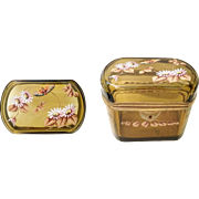 Antique Bohemian Amber Casket. ~ Oval Shaped Hinged Box with Smooth Gilt Mounts ~ Exquisite Top has Heavy Enameled Flowers, Vine &  a Butterfly