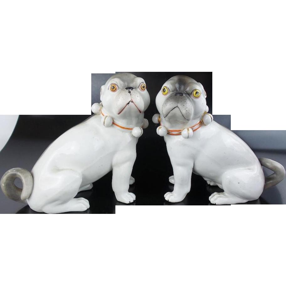 """Antique Porcelain Pugs """"R A R E  COLOR"""""""