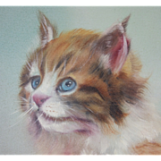 Big Blue Eyed Cat Oil Painting