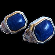 Blue Christian Dior Earrings