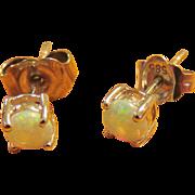 Opal 14K White Gold Pierced Earrings