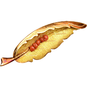 18kt Leaf Brooch with Coral