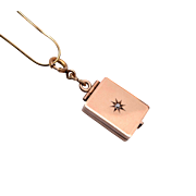 10kt Gold & Diamond Locket and Chain