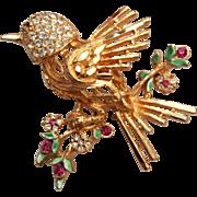 BSK Rhinestone Bird Brooch