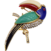 Molded Plastic and Rhinestone Toucan Bird Brooch