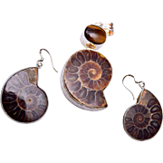 Ammonite Fossil in Sterling Findings - Pendant, Ring and Pierced Earrings