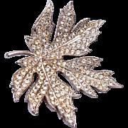ORA Rhinestone Leaf Brooch