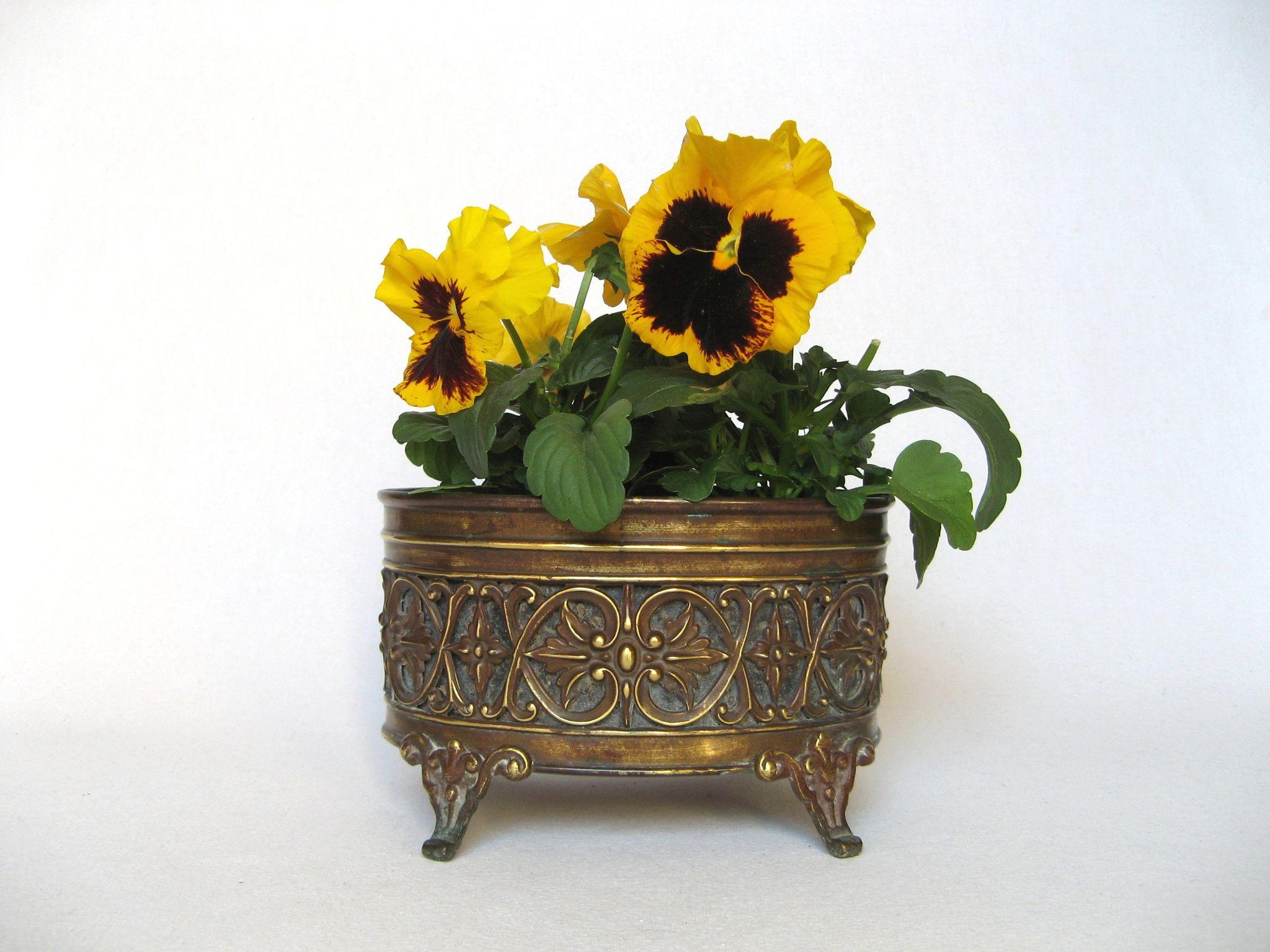 petite french brass jardiniere planter 19th century. Black Bedroom Furniture Sets. Home Design Ideas