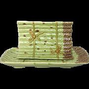 French Majolica Asparagus Server - 2 Piece Barbotine Set