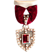 Heraldry silver shield brooch garnet velvet romantic jewelry
