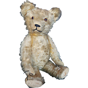 Vintage 1920's Mohair Teddy Bear with Glass Eyes 19""