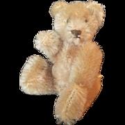 """Vintage 1950's Steiff 3 3/4"""" Teddy Bear"""