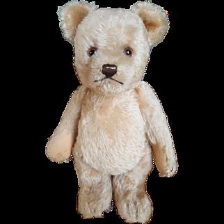 """1953 Steiff Jackie 9 1/2"""" Mohair Teddy Bear"""