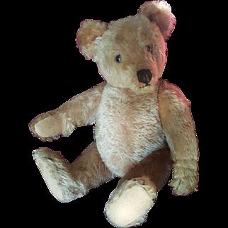 """Vintage 1940's Steiff Mohair Teddy Bear  12 1/2"""""""
