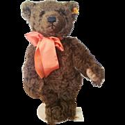 """Steiff Classic 13 1/2"""" Mohair Autumn Bear"""