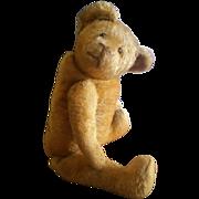 "Wonderful 19"" Vintage 1920's Champagne Mohair Teddy Bear"