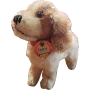 1950's Steiff Cockie Dog with Chest Tag
