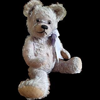 RARE 1920's J.K. Farnell Lilac Mohair Teddy Bear