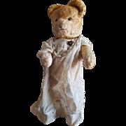 Vintage 1930's Silk Plush Dressed Teddy Bear