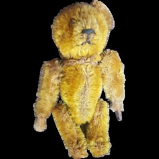 Vintage Schuco Mohair Tumbling Teddy Bear