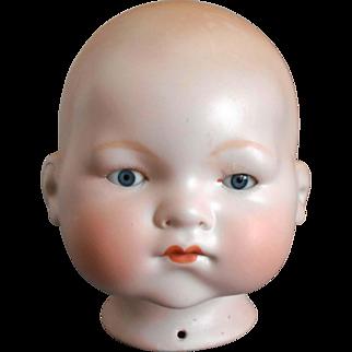 "Lg 15 3/4"" Circ Life-size German Bisque Armand Marseille A.M. 341/8 DREAM BABY Doll Head"