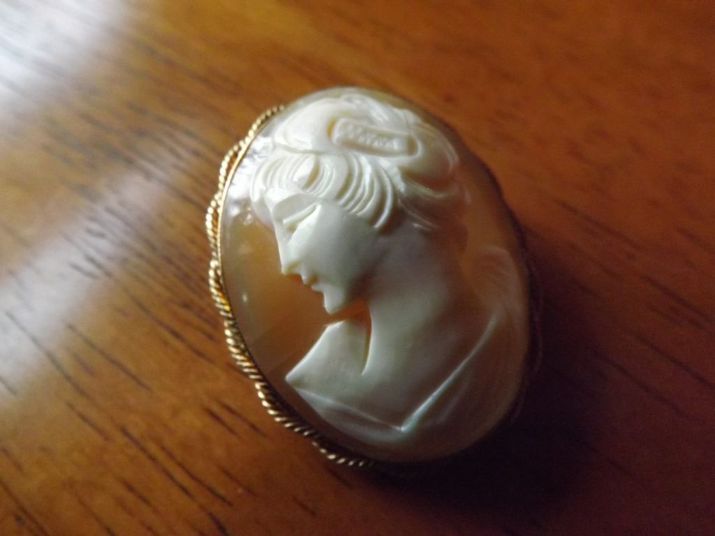 Cameo Pin/Pendant 12 Karat Gold Filled
